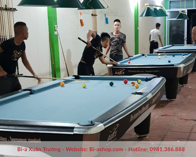 bi ashop ban bi a alex 9017 special billiards 06